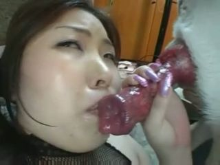 Are asia dog blowjob consider