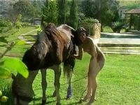 Dark-haired chick jerks off stallion outdoors