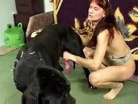 Such a pleasure for lady to be intimate with dog