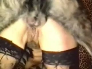 Big-butted girl has fun with her aroused domestic pet